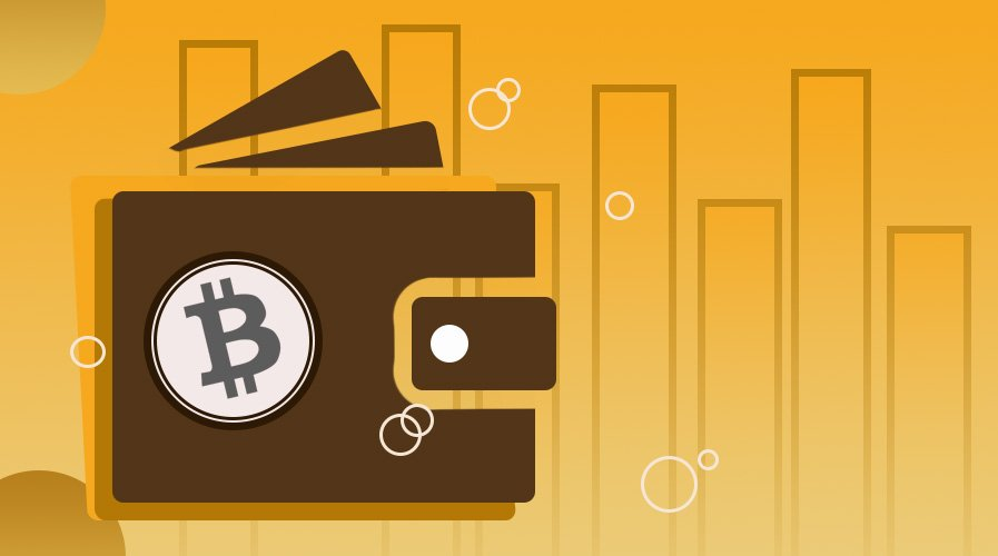 Top Bitcoin Wallets Of 2020 To Secure Your Digital Coins