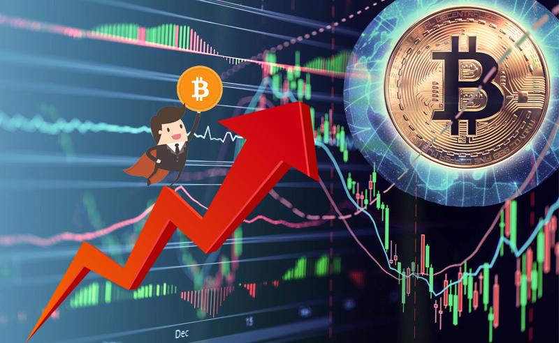 Economics Of Cryptocurrency