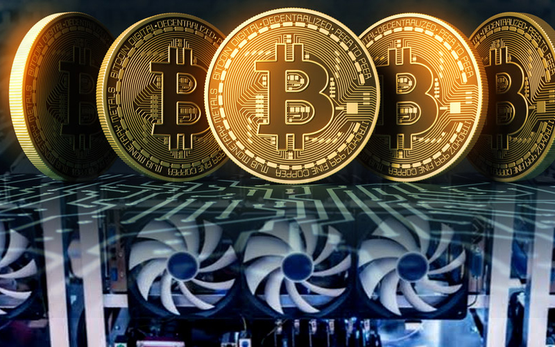 Paradigm Founder Disagrees with Leibowitz's observation about Bitcoin Halving