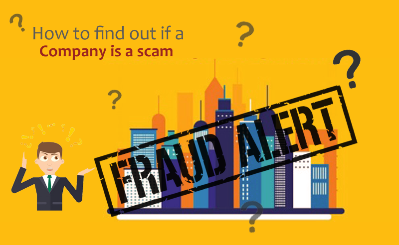 Guide For Cryptocurrency Scams | How To Find If A Company Is A Scam?