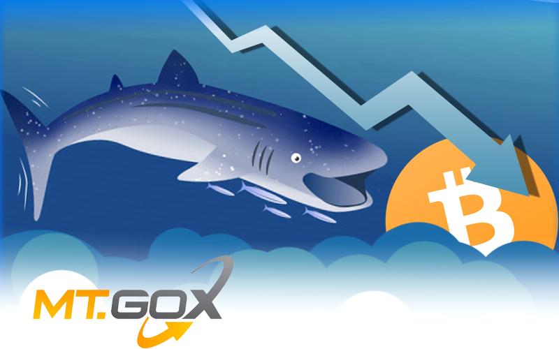 Whale Alert Creates a Scare Over $900 Million Mt.Gox Dump
