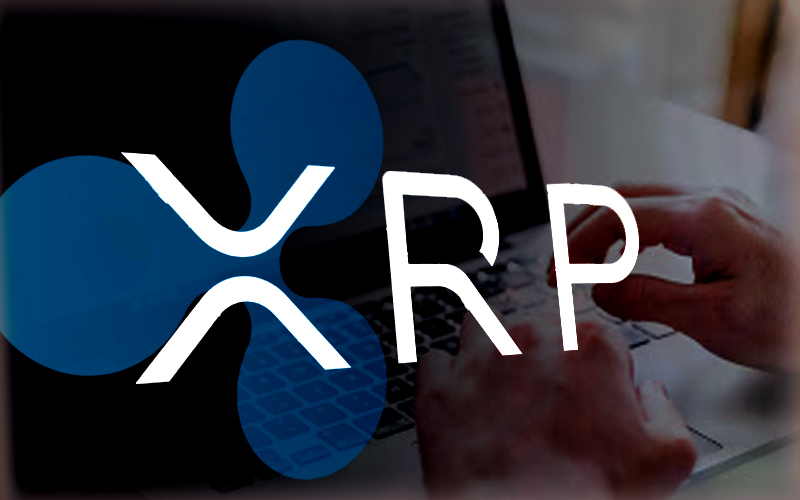 XRP Market Got a Pulse and Stable Respiration