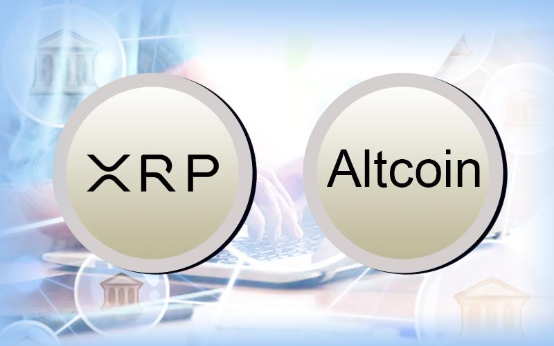 XRP Leads Google Search Volume Despite Criticism