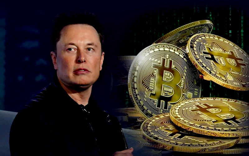 Tesla's CEO Strikes J.K. Rowling by Comparing Bitcoin and Fiat