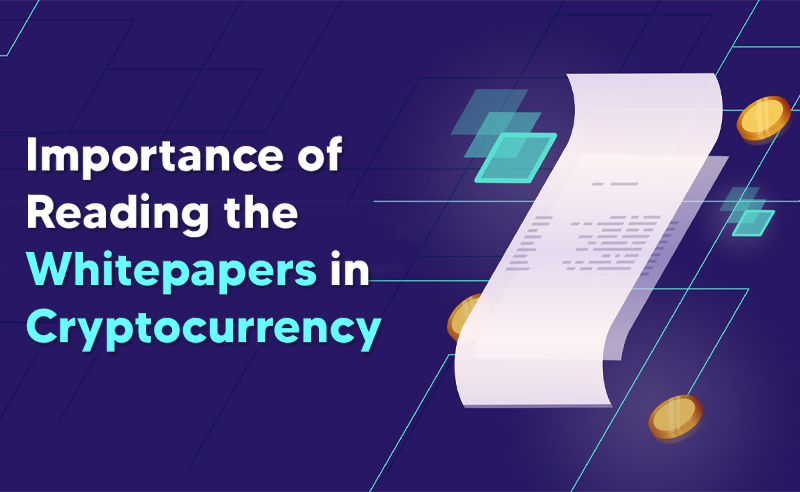 Importance Of Reading The Whitepapers In Cryptocurrency