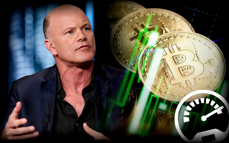 Mike Novogratz wants Bitcoiners to Keep an Eye on Gold-BTC Chart