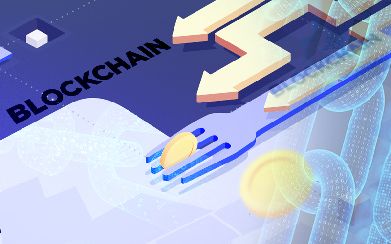 Why Blockchain Networks Have to Fork or Split?