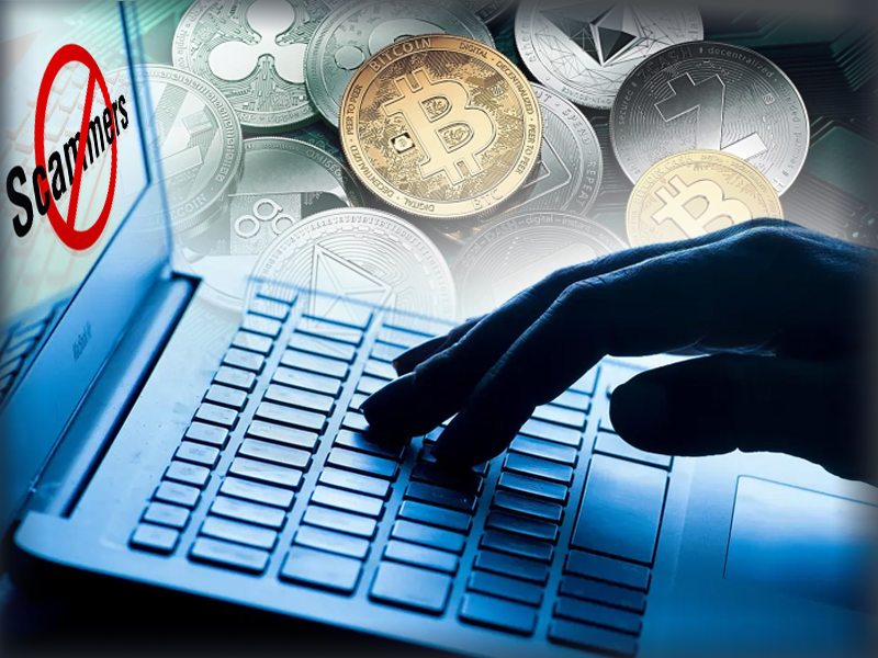 Whale Alert Report Claims Scammers Stolen $24M Bitcoin in 2020