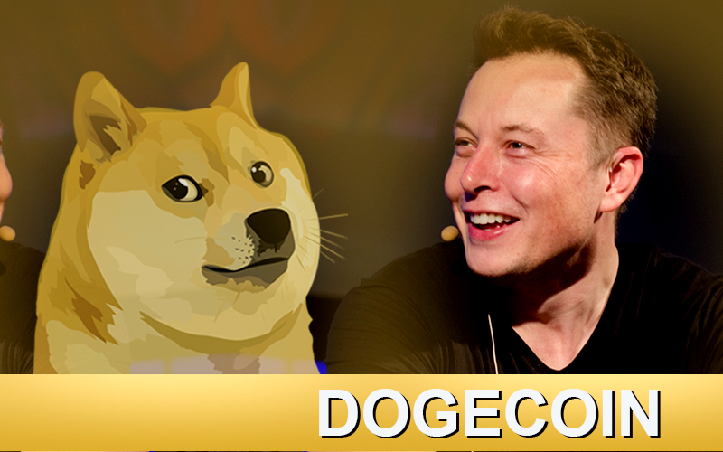 Elon Musk Is Searching DOGE Place in the Sun