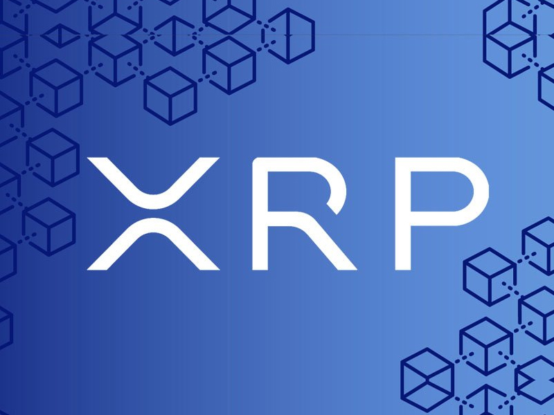 XRP Tweets Reaches All-Time High After 14% Increase in Price