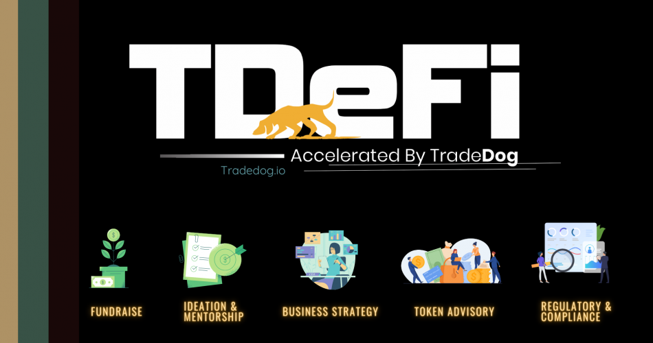 TDeFi: Accelerating DeFi, Fostering Innovation