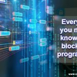 Everything you need to know about Blockchain Programming