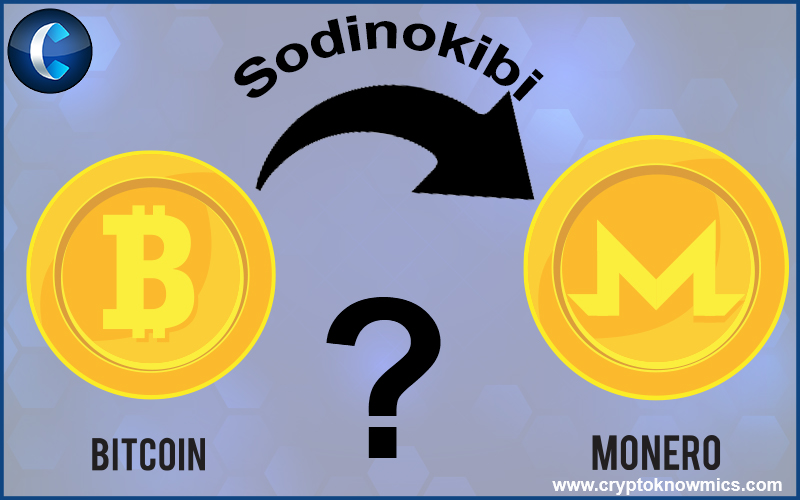 Why Sodinokibi shifted from using Bitcoin to Monero?
