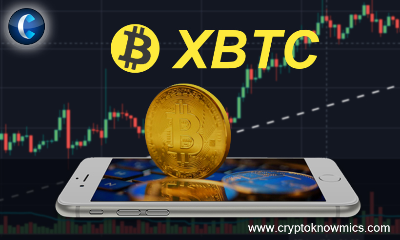 Tradedog's Review of xBTC- Industry Problems, Solutions, and Purchase Recommendation