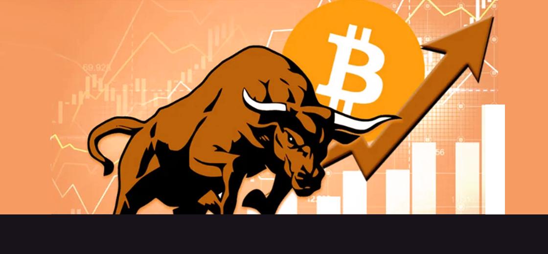 Bitcoin Bull Run Starting, Suggests On-Chain Metrics