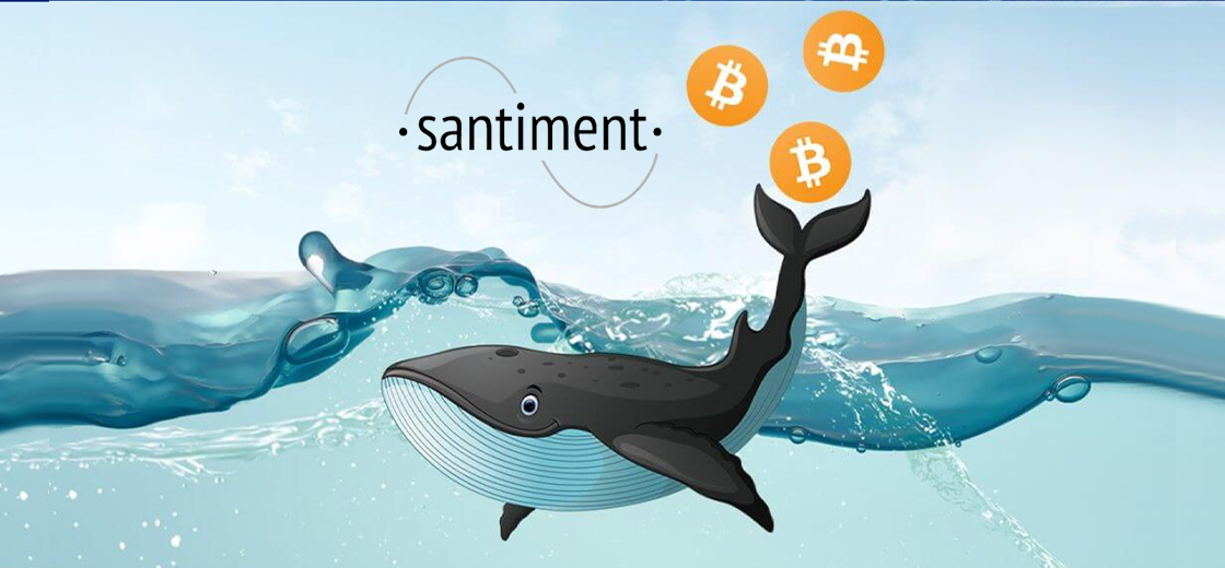 Bitcoin Whales Buying Bitcoin Aggressively Since Christmas: Santiment