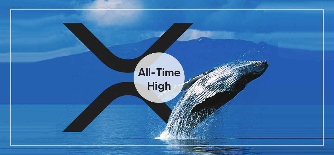 XRP Whales Hits All-Time High Amid Upcoming Spark Token Airdrop