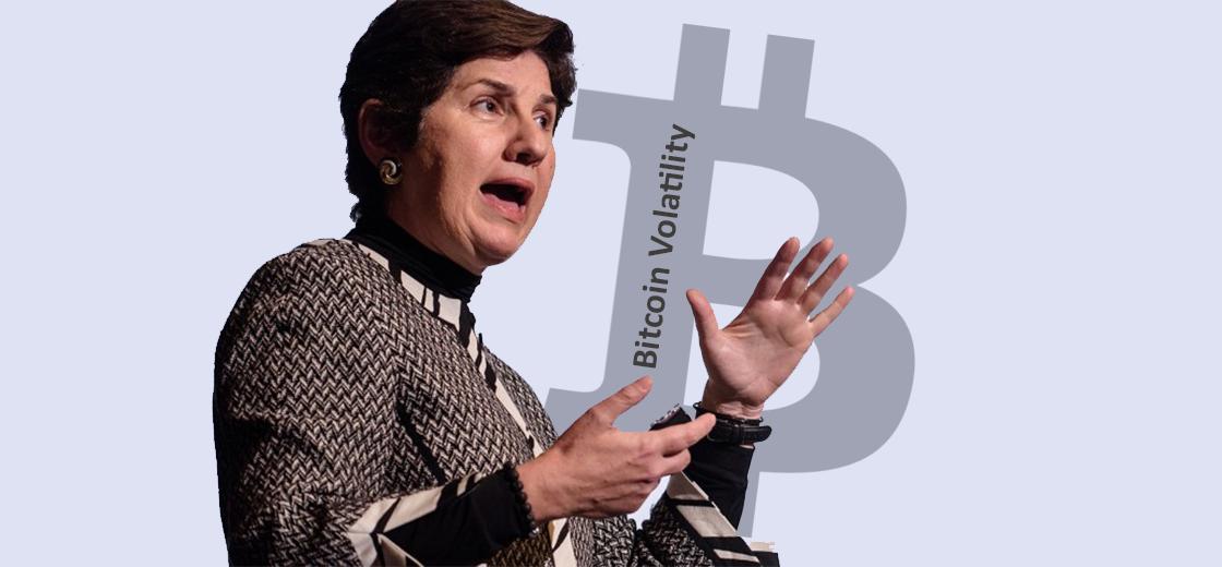 Goldman Sachs CIO Rahmani Warns on Bitcoin Volatility