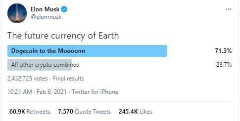 Elon Musk Dogecoin Poll