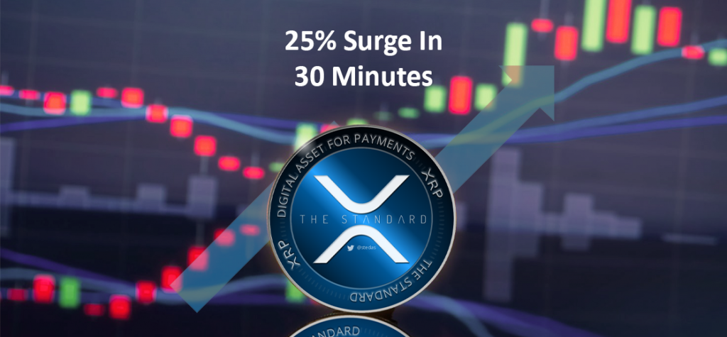 XRP Price Witnessed 25% Surge within 30 Minutes