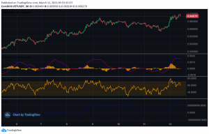 VET Price Analysis