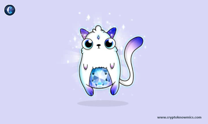 CryptoCats Reborn, When the Blockchain Takes Power Over Developers