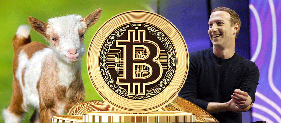 Mark Zuckerberg Reveals One of His Pet Goat Is Named 'Bitcoin'