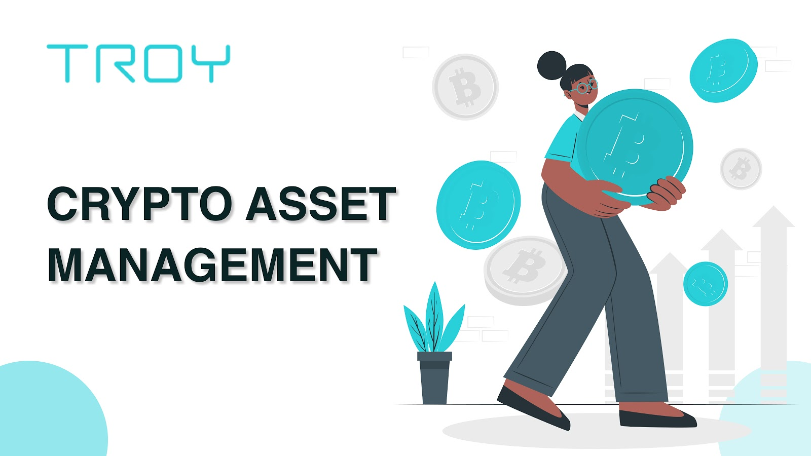 Breaking: Manage Crypto Holdings Efficiently Through Troy's Automatic Investment Tool for Asset Management