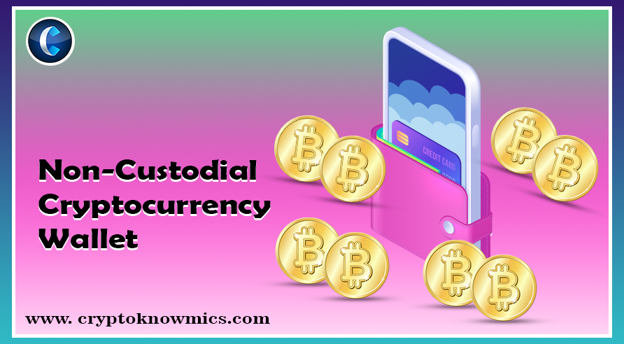 What Is a Non-Custodial Cryptocurrency Wallet and How It Helps to Control Your Digital Assets