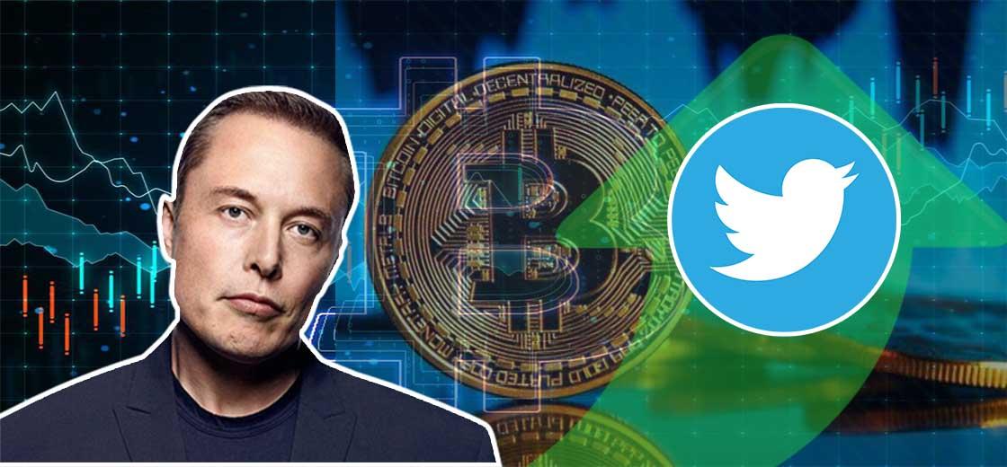 Bitcoin Price Jumps Above After Elon Musk's Bullish Tweet