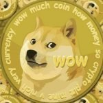 Animal Tokens Surge, Can it be a Good Thing for Crypto Space?