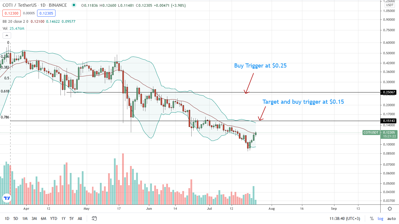 COTI Protocol Price Daily Chart for July 24
