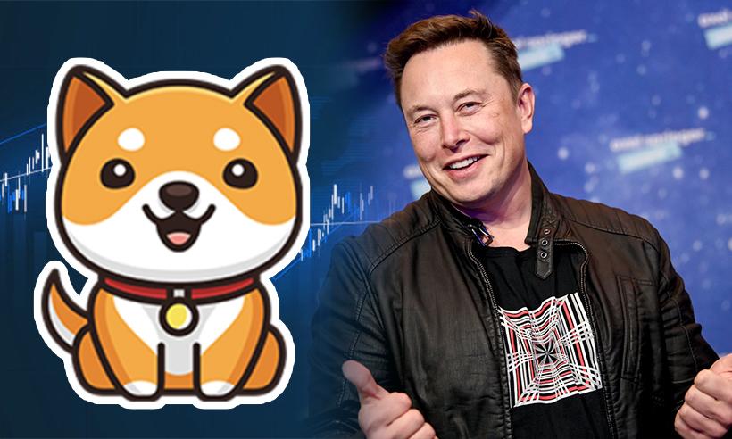 Baby Doge Records 90% Spike Following Tweet from Elon Musk