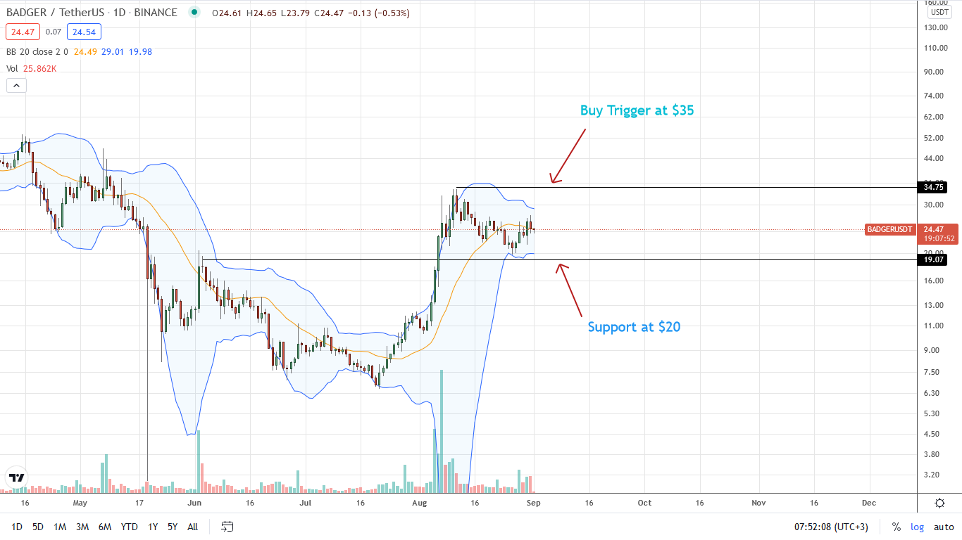 BADGER DAO Price Daily Chart for September 1