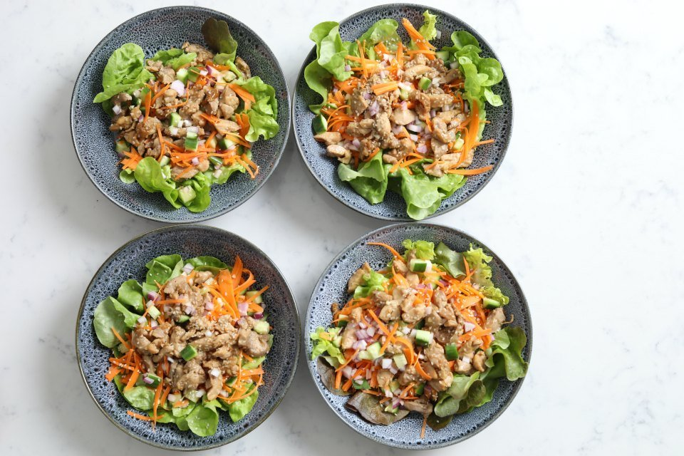 Honey Soy Chicken & Salad-2