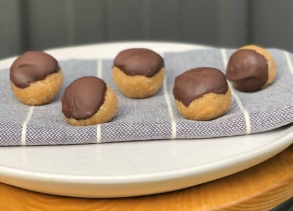 4 ingredient peanut butter protein balls