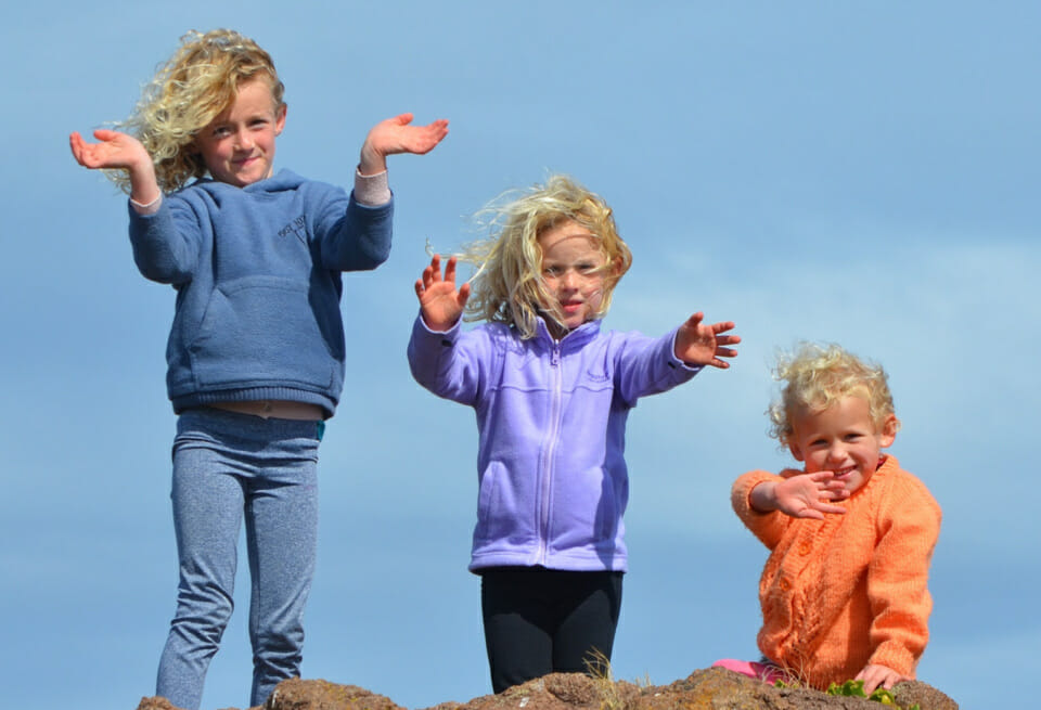 Experts reckon the middle child is going extinct!