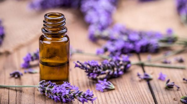 Lavender oil linked to abnormal breast growth