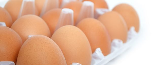 Free Range Egg Farms fined $300k for misleading claims