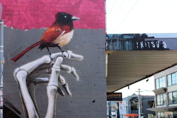 What's new in Fitzroy