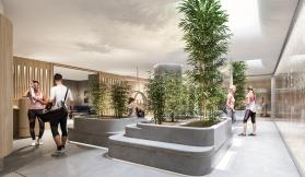 101 Collins Street's world-class wellness centre sets new standard for office building amenities