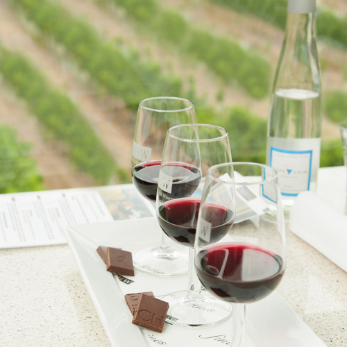 Chocolate, wine and views of the vineyard at Hahndorf Hill cellar door