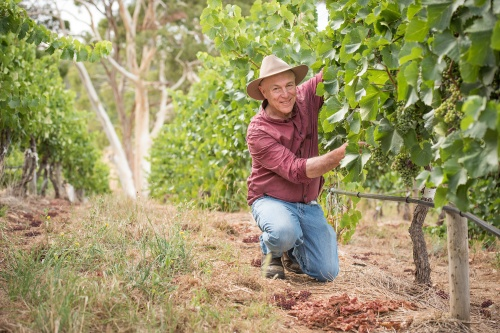 Larry Jacobs in his Hahndorf Hill vineyard