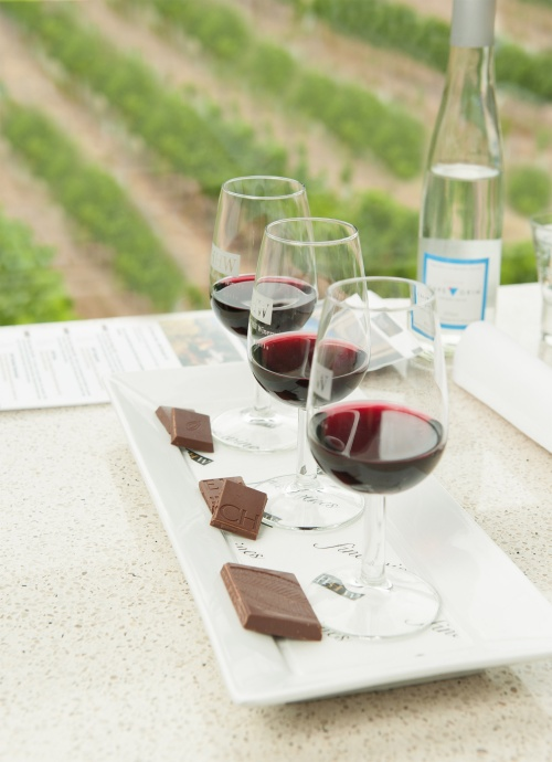 ChocoVino - Chocolate wine and views of the vineyard at Hahndorf Hil