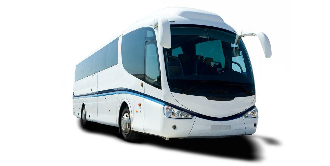 Bus and Coach Hire NZ