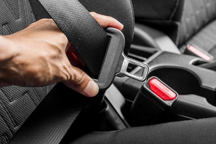 Buy Seat Belt Online at Lowest Price in New Zealand