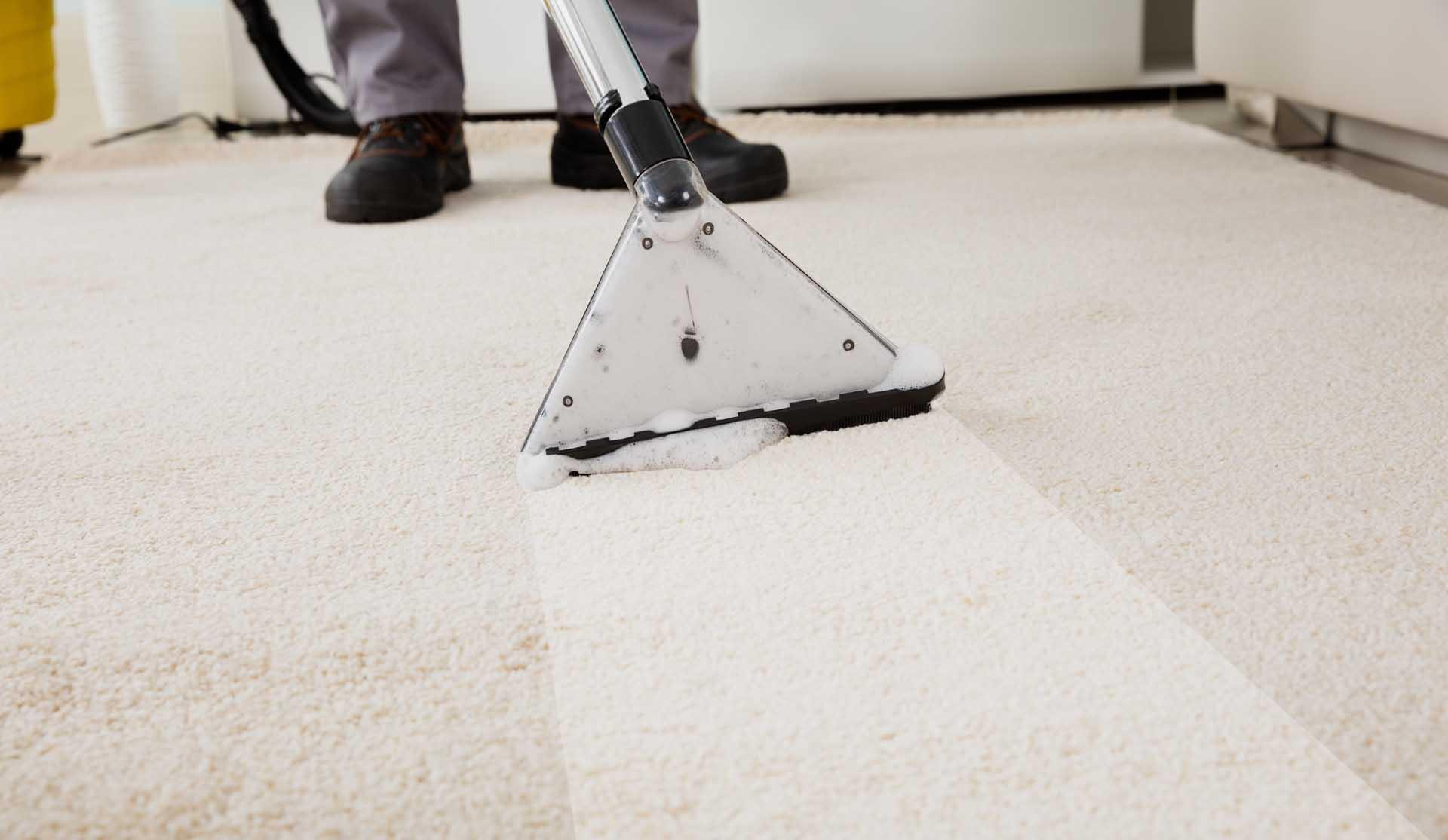 Christchurch Carpet Cleaner