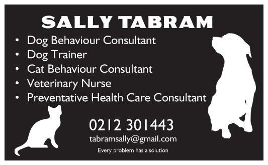 Every problem has a solution! Dog training, puppy school and behaviour consultations