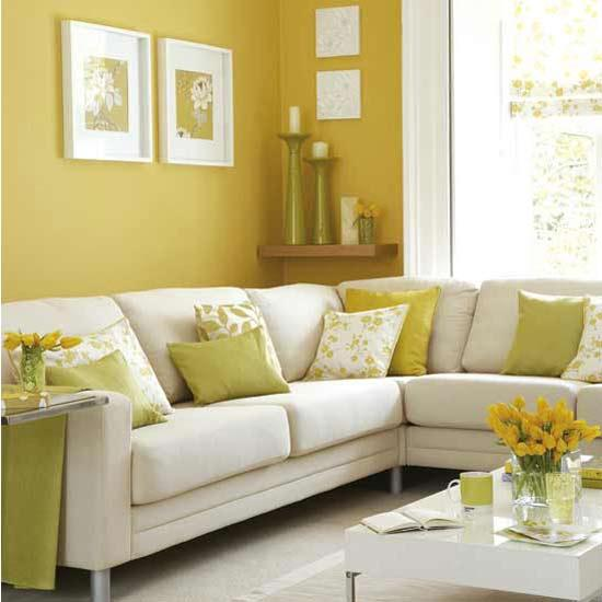 Expert Painters and Decorators in Auckland