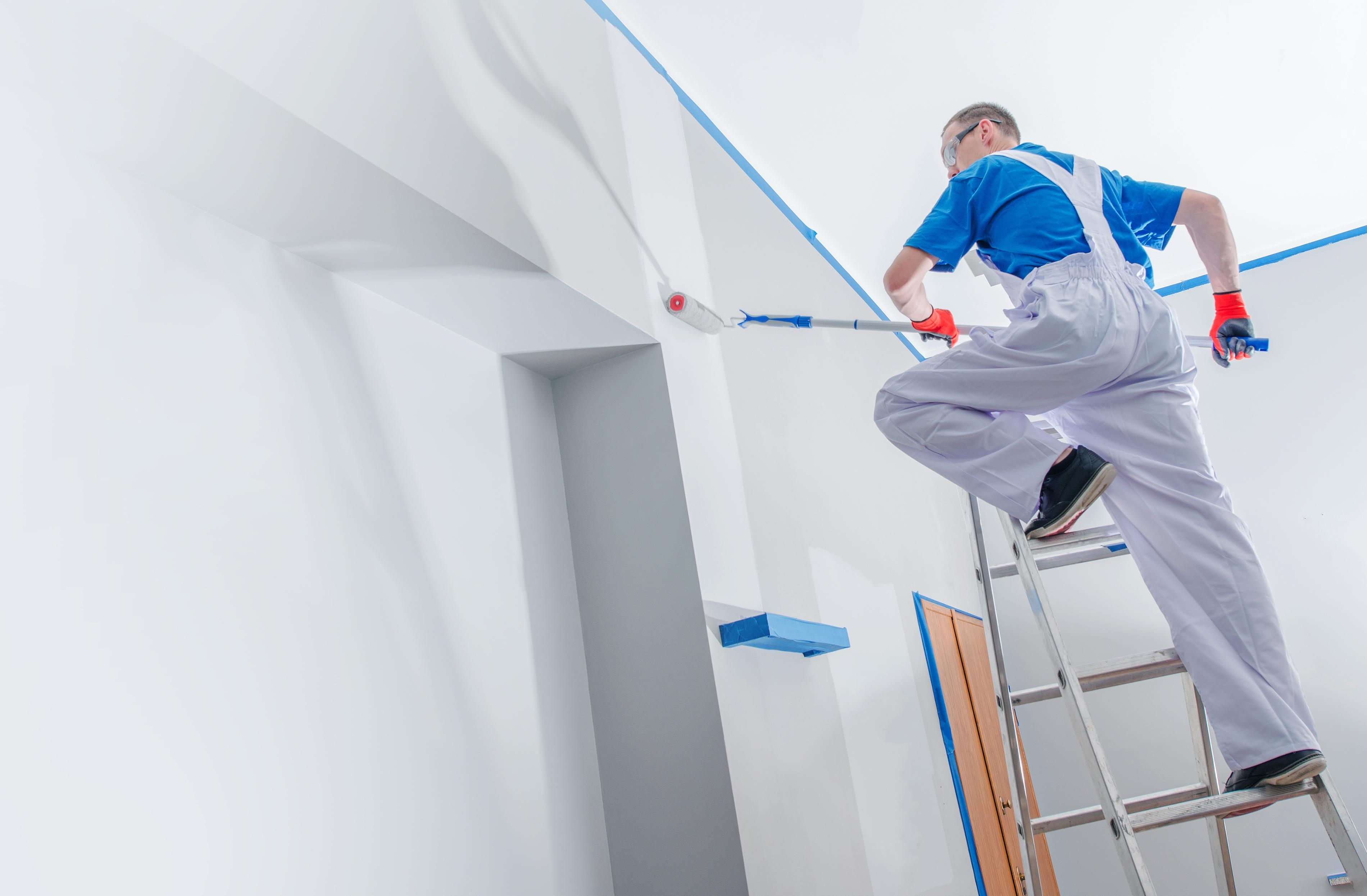 Hire Our Qualified Painters and Decorators Auckland